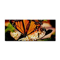 Monarch Butterfly Nature Orange Cosmetic Storage Cases by Amaryn4rt