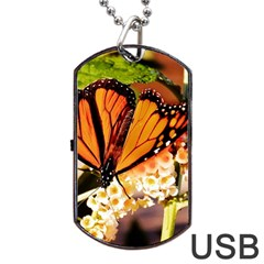 Monarch Butterfly Nature Orange Dog Tag Usb Flash (one Side) by Amaryn4rt
