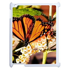 Monarch Butterfly Nature Orange Apple Ipad 2 Case (white) by Amaryn4rt
