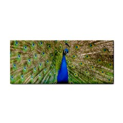 Peacock Animal Photography Beautiful Cosmetic Storage Cases by Amaryn4rt