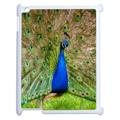 Peacock Animal Photography Beautiful Apple Ipad 2 Case (white) by Amaryn4rt
