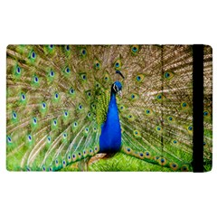 Peacock Animal Photography Beautiful Apple Ipad 3/4 Flip Case by Amaryn4rt