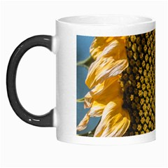 Sunflower Bright Close Up Color Disk Florets Morph Mugs by Amaryn4rt