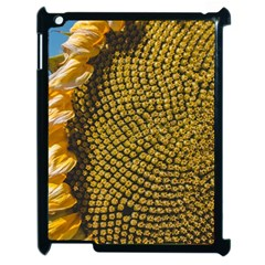 Sunflower Bright Close Up Color Disk Florets Apple Ipad 2 Case (black) by Amaryn4rt