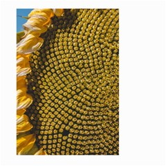 Sunflower Bright Close Up Color Disk Florets Large Garden Flag (two Sides) by Amaryn4rt