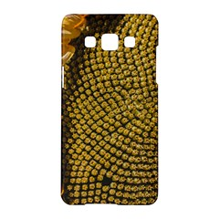 Sunflower Bright Close Up Color Disk Florets Samsung Galaxy A5 Hardshell Case  by Amaryn4rt