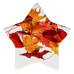 Autumn Leaves Leaf Transparent Ornament (star) by Amaryn4rt