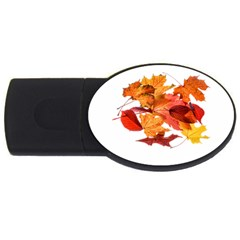 Autumn Leaves Leaf Transparent Usb Flash Drive Oval (4 Gb) by Amaryn4rt