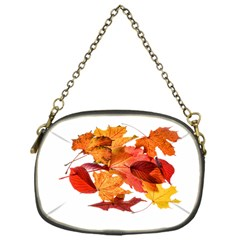 Autumn Leaves Leaf Transparent Chain Purses (one Side)  by Amaryn4rt