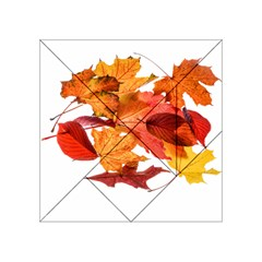 Autumn Leaves Leaf Transparent Acrylic Tangram Puzzle (4  X 4 ) by Amaryn4rt