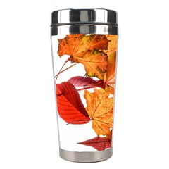 Autumn Leaves Leaf Transparent Stainless Steel Travel Tumblers