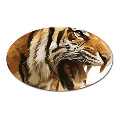 Royal Tiger National Park Oval Magnet by Amaryn4rt