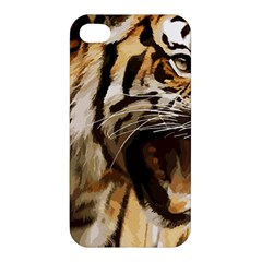 Royal Tiger National Park Apple Iphone 4/4s Hardshell Case by Amaryn4rt