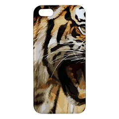 Royal Tiger National Park Iphone 5s/ Se Premium Hardshell Case by Amaryn4rt