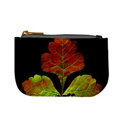 Autumn Beauty Mini Coin Purses