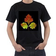 Autumn Beauty Men s T Shirt (black) by Nexatart