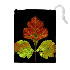 Autumn Beauty Drawstring Pouches (extra Large) by Nexatart