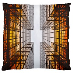 Architecture Facade Buildings Windows Large Cushion Case (one Side)