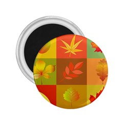 Autumn Leaves Colorful Fall Foliage 2 25  Magnets