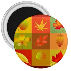 Autumn Leaves Colorful Fall Foliage 3  Magnets