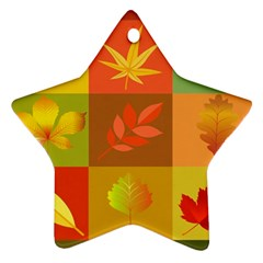 Autumn Leaves Colorful Fall Foliage Ornament (star) by Nexatart
