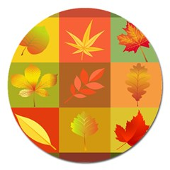 Autumn Leaves Colorful Fall Foliage Magnet 5  (round)