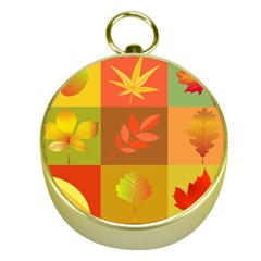 Autumn Leaves Colorful Fall Foliage Gold Compasses by Nexatart