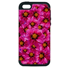 Dahlia Flowers Pink Garden Plant Apple Iphone 5 Hardshell Case (pc+silicone) by Nexatart