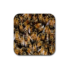 Honey Bee Water Buckfast Rubber Square Coaster (4 Pack)  by Nexatart