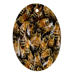 Honey Bee Water Buckfast Oval Ornament (two Sides)