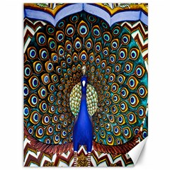 The Peacock Pattern Canvas 36  X 48   by Nexatart