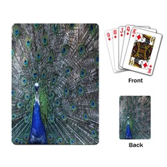 Peacock Four Spot Feather Bird Playing Card