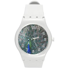 Peacock Four Spot Feather Bird Round Plastic Sport Watch (m) by Nexatart