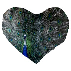 Peacock Four Spot Feather Bird Large 19  Premium Heart Shape Cushions by Nexatart