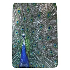 Peacock Four Spot Feather Bird Flap Covers (s)  by Nexatart