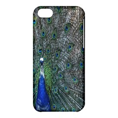 Peacock Four Spot Feather Bird Apple Iphone 5c Hardshell Case by Nexatart