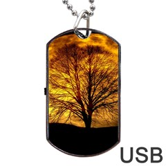 Moon Tree Kahl Silhouette Dog Tag Usb Flash (one Side) by Nexatart