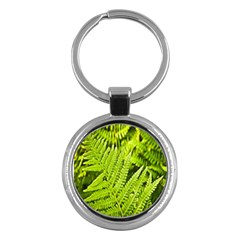 Fern Nature Green Plant Key Chains (round)