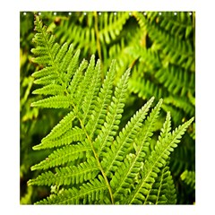 Fern Nature Green Plant Shower Curtain 66  X 72  (large)  by Nexatart