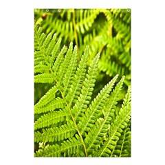 Fern Nature Green Plant Shower Curtain 48  X 72  (small)