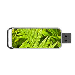 Fern Nature Green Plant Portable Usb Flash (two Sides) by Nexatart