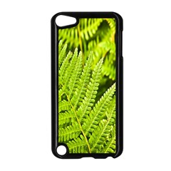 Fern Nature Green Plant Apple Ipod Touch 5 Case (black) by Nexatart