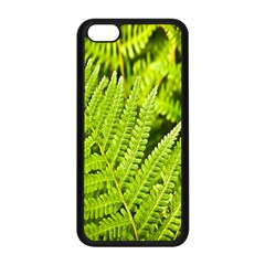 Fern Nature Green Plant Apple Iphone 5c Seamless Case (black) by Nexatart