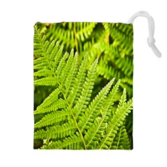 Fern Nature Green Plant Drawstring Pouches (extra Large) by Nexatart