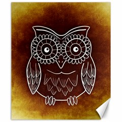 Owl Abstract Funny Pattern Canvas 20  X 24   by Nexatart