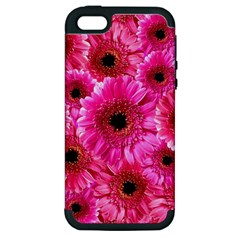 Gerbera Flower Nature Pink Blosso Apple Iphone 5 Hardshell Case (pc+silicone) by Nexatart