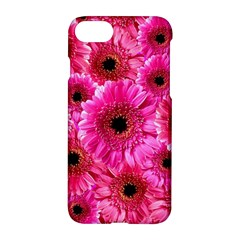 Gerbera Flower Nature Pink Blosso Apple Iphone 7 Hardshell Case by Nexatart