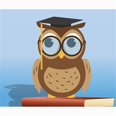 Read Owl Book Owl Glasses Read Canvas 20  X 24   by Nexatart