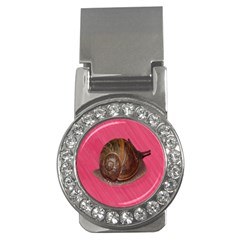 Snail Pink Background Money Clips (cz)  by Nexatart