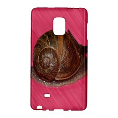 Snail Pink Background Galaxy Note Edge by Nexatart